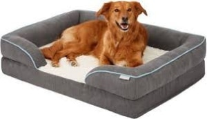 Frisco Plush Orthopedic Front Bolster Dog Bed