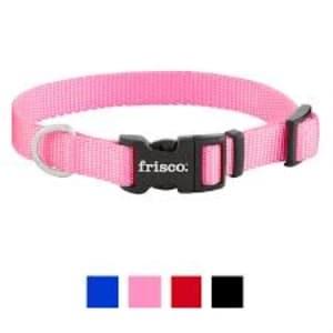 Frisco Solid Nylon Dog Collar
