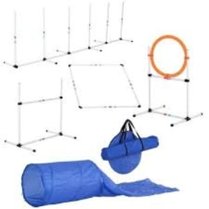 Pawhut 4 Piece Obstacle Dog Agility Training Course