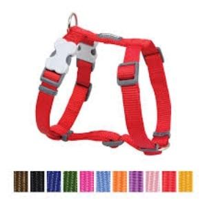 Red Dingo Classic Dog Harness