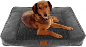 American Kennel Club Extra Large Memory Foam Pillow Dog Bed