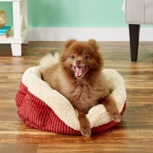 Aspen Pet Self Warming Bolster Cat & Dog Bed