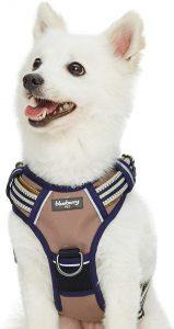 Blueberry Pet 3m Reflective Multi Colored Stripe Padded Dog Harness