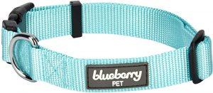 Blueberry Pet Essentials Dog Collar