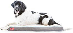 Brindle Plush Orthopedic Pillow Dog Bed