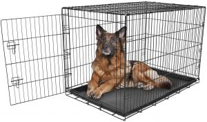 Carlson Pet Products Secure & Compact Double Door Collapsible Wire Dog Crate