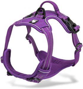 Chai's Choice 3m Reflective Dog Harness