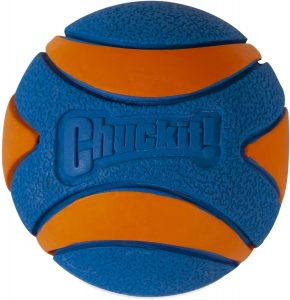 Chuckit! Ultra Squeaker Ball Tough Dog Toy