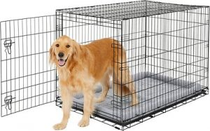 Frisco Fold And Carry Single Door Collapsible Wire Dog Crate