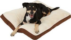 Frisco Pillow Cat & Dog Bed