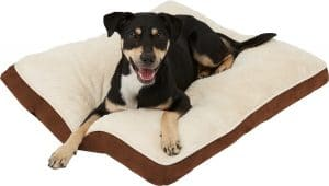 Frisco Pillow Cat And Dog Bed