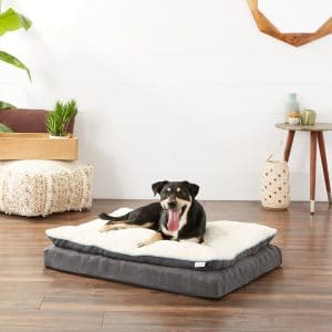 Frisco Plush Orthopedic Pillow Dog Bed w/Removable Cover