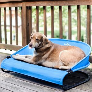 Gen7pets Cool Air Cot Elevated Dog Bed