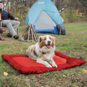 Kurgo Loft Wander Pillow Dog Bed