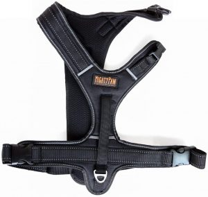 Mighty Paw Padded Sports Dog Harness