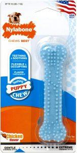 Nylabone Puppy Petite Dental Puppy Chew Toy