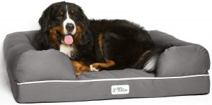 PetFusion Ultimate Lounge Memory Foam Bolster Cat and Dog Bed w/Removable Cover