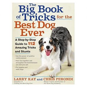 The Big Book Of Tricks For The Best Dog Ever By Larry Kay