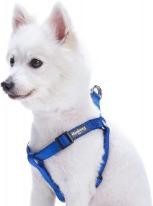 Blueberry Pet Classic Solid Nylon Step In Dog Harness