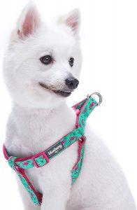 Blueberry Pet Spring Prints Nylon Step In Back Clip Dog Harness