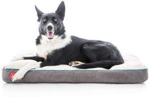 Brindle Soft Orthopedic Pillow Dog Bed