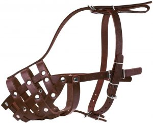 Collardirect Leather Dog Muzzle For Doberman & Border Collie