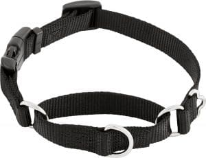 Frisco Solid Nylon Martingale Dog Collar With Buckle
