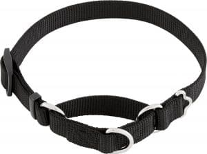 Frisco Solid Nylon Slip On Martingale Dog Collar