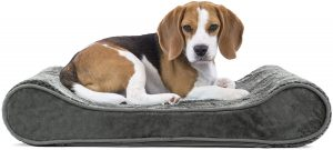 Furhaven Minky Plush Luxe Lounger Orthopedic Dog Bed