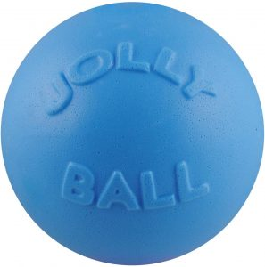 Jolly Pets Bounce N Play Dog Toy