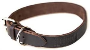 Mighty Paw Leather Dog Collar
