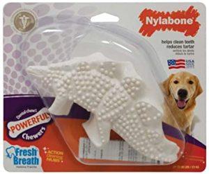 Nylabone Durachew Dental Chew Chicken Flavoured Dinosaur Dog Chew Toy