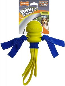 Nylabone Power Play Fling A Bounce Dog Toy