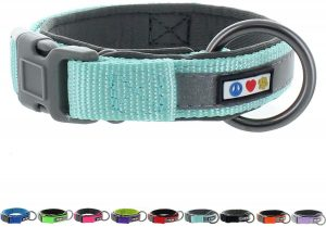 Pawtitas Padded Nylon Reflective Martingale Dog Collar