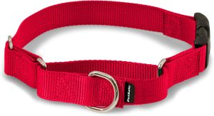 Petsafe Premier Quick Snap Nylon Martingale Dog Collar