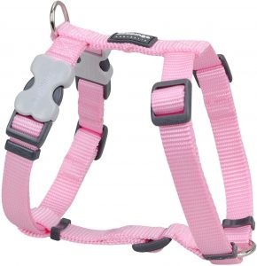 Red Dingo Classic Nylon Back Clip Dog Harness