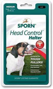 Sporn Head Control Dog Halter