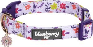 Blueberry Pet 3m Spring Pastel Polyester Reflective Dog Collar