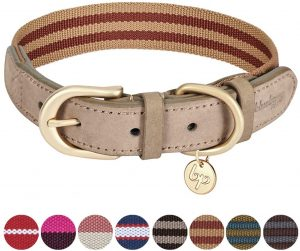 Blueberry Pet Classic Leather Striped Dog Collar