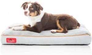Brindle Soft Orthopedic Pillow Dog Bed