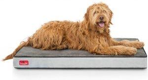 Brindle Waterproof Orthopedic Pillow Dog Bed