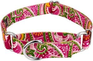 Country Brook Design Paisley Polyester Martingale Dog Collar