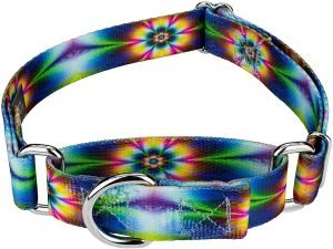 Country Brook Design Tie Dye Flowers Polyester Martingale Dog Collar & Leash