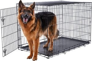 Frisco Fold And Carry Heavy Duty Dog Crate