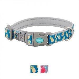 Frisco Patterned Neoprene Dog Collar