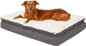 Frisco Plush Orthopedic Pillowtop Dog Bed