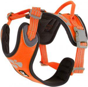 Hurtta Weekend Warrior Eco Reflective Dual Clip Dog Harness