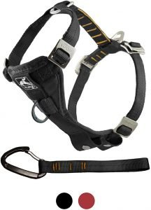 Kurgo Tru Fit Enhanced Strength Car Safety Dog Harness