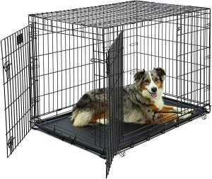 Midwest Double Door Collapsible Wire Puppy Crate