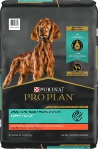 Purina Pro Plan Sensitive Skin & Stomach Salmon & Rice Formula Puppy Dry Dog Food